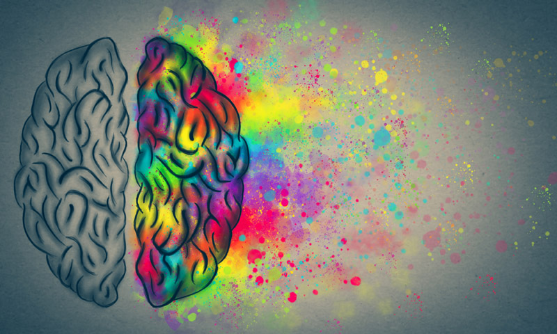 Your Genes Control Brain Chemistry and Health