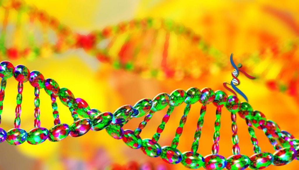 Genetic Testing with My Happy Genes