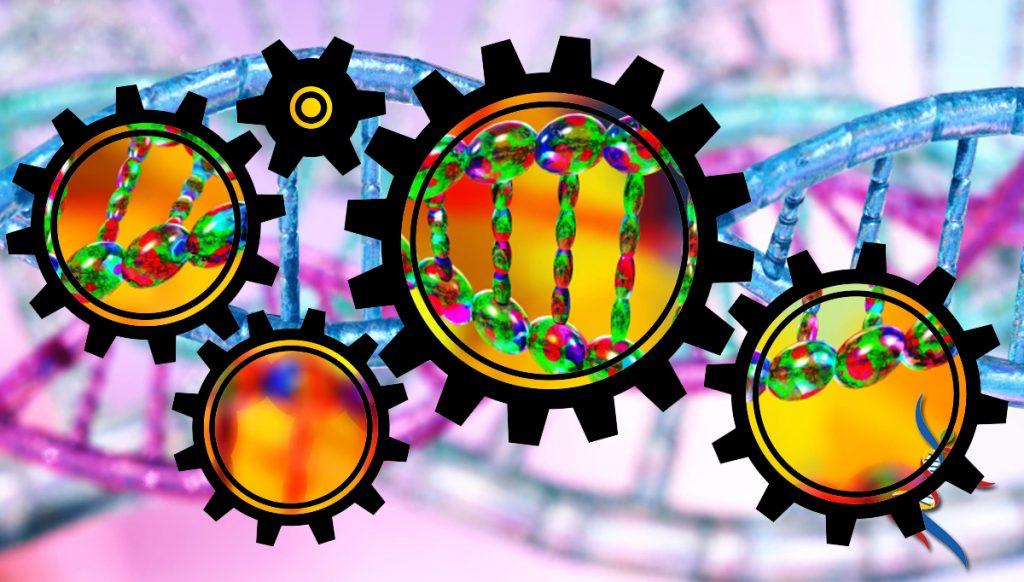 MyHappyGenes Genetic Mechanics